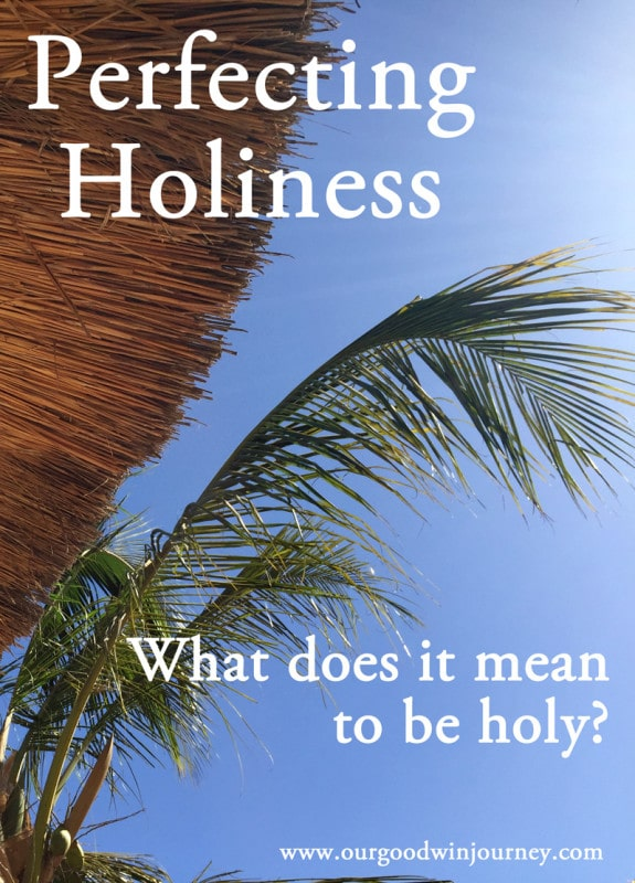 Christian Faith - In Perfecting Holiness