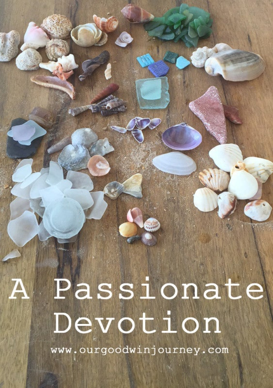 What Does Devotion Mean - Being Passionately Devoted to God