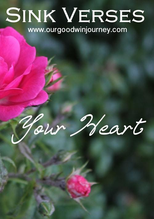 sink verses - your heart #faith #encouragement #trust #hope #sinkverses