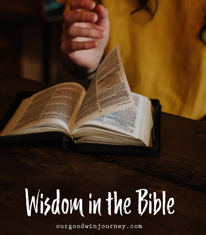 Wisdom in the Bible - Keeping Wisdom in View Every Day