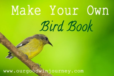 make your own bird book