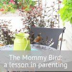 The Mommy Bird