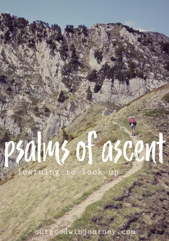 Psalms of Ascent - Learning to Look Up