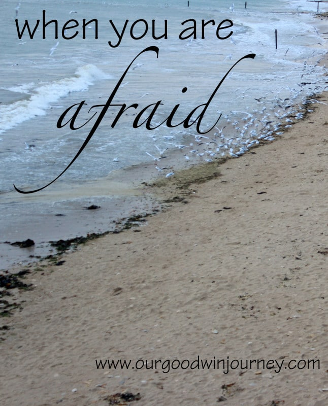 Fear Not - When You Are Afraid and How To Trust Him