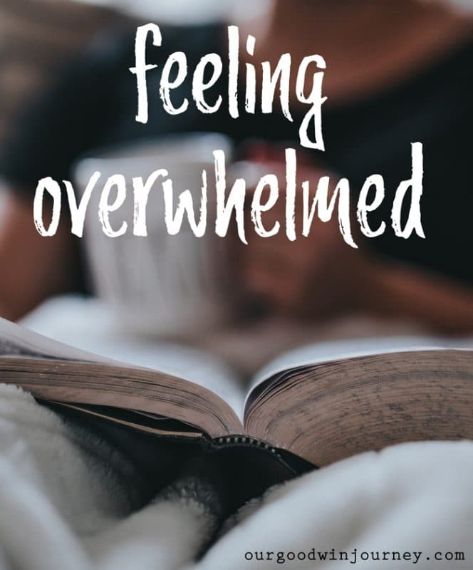 Feeling Overwhelmed - When There Are No Words