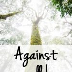Against All Hope – When You Are Without Hope