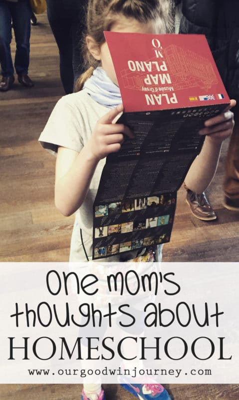 Homeschool Mom - Top Ten Thoughts from One Homeschool Mom