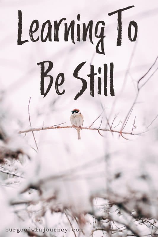 Be Still - Learning to Live Out This Precious Promise