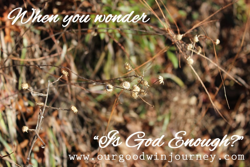 God Is Enough - For Those Days We Wonder If He Is Enough