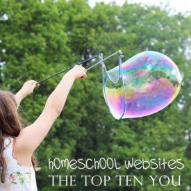 Homeschool Websites – Top Ten You Need to Know!