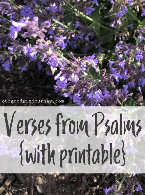 Psalms Verses I Love - With a Printable List for you!