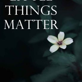 Little Things Matter - In Giving. In Missions. In Life.