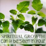 Spiritual Growth: Can you see it?
