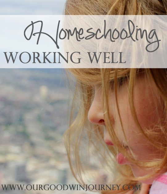 homeschooling working well #ihsnet #homeschool #hsbloggers