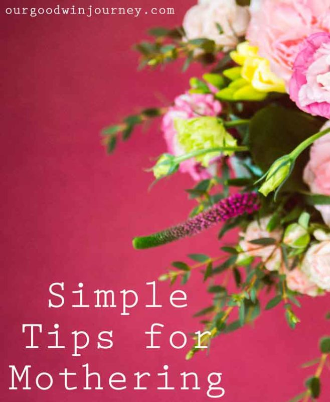 Mothering - Simple Tips for Mothering and Spiritually Leading Your Children
