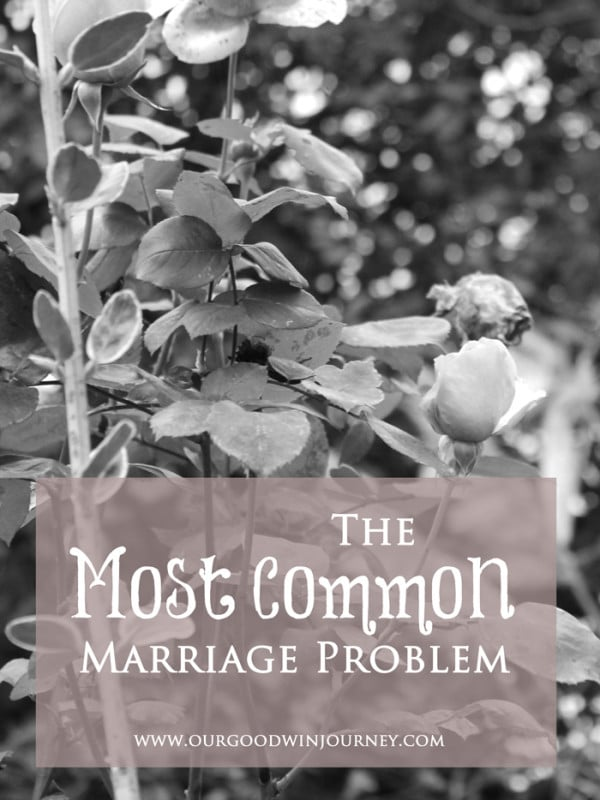 Marriage Problems and The Most Common Marriage Problem