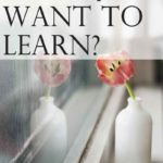What Do You Want to Learn