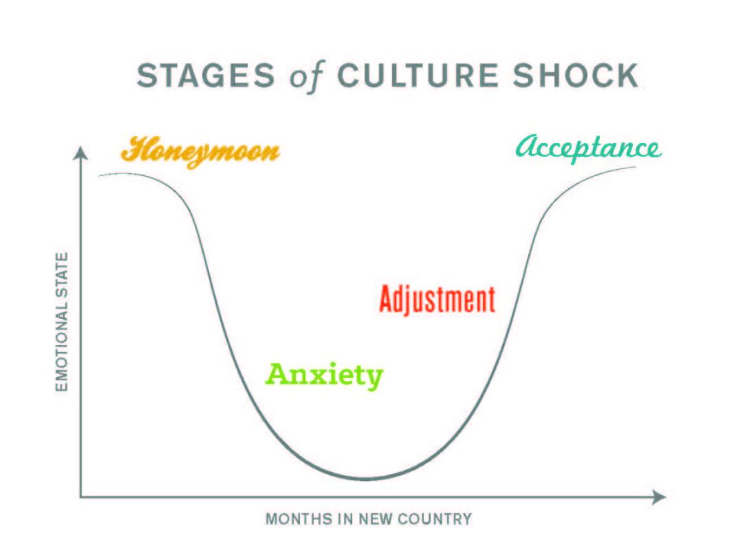 Culture Shock Bell Curve