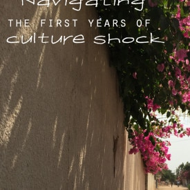 Navigating the First Years of Culture Shock