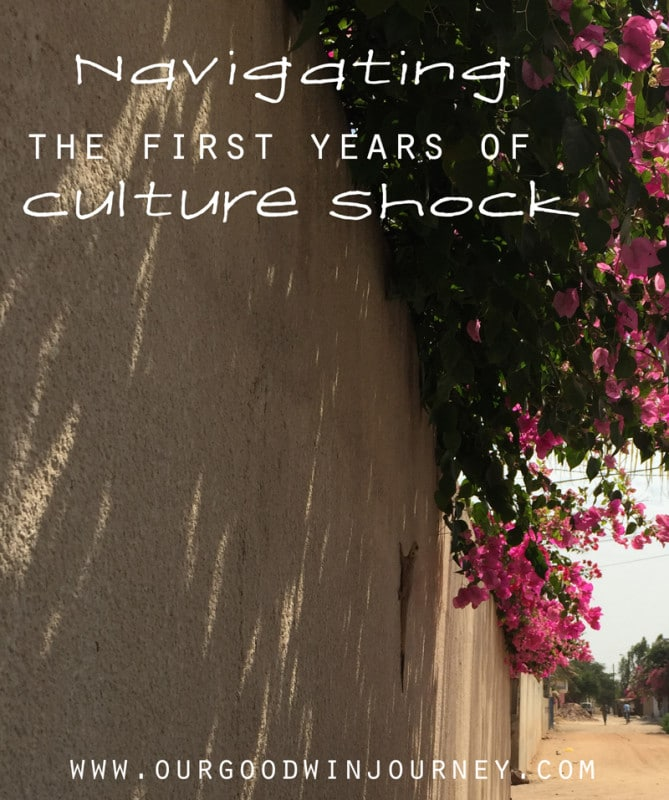 Stages of Culture Shock - Navigating the First Years of Culture Shock