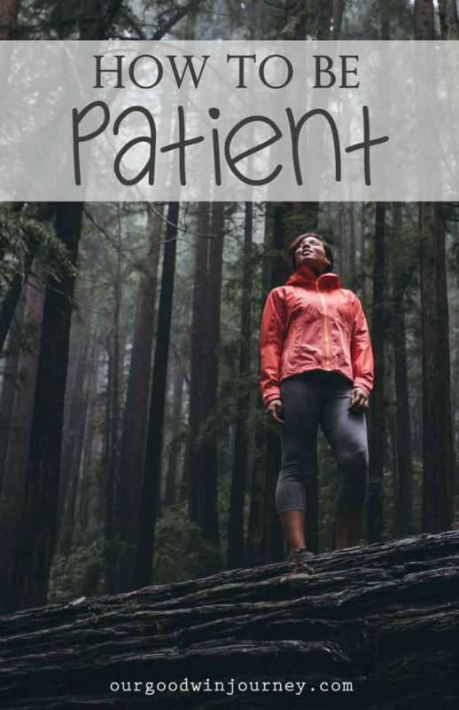 How To Be Patient - with life lessons in patience, endurance, perseverance