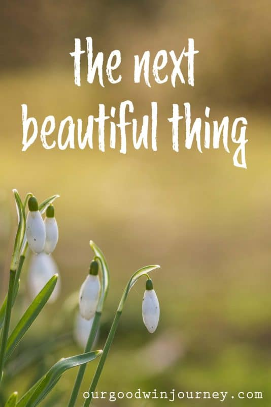 the next beautiful thing