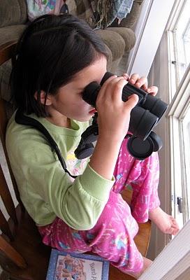 Bird Watching - How to Help Your Kids Make a Bird Book