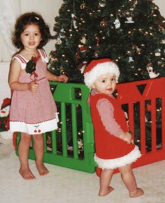 Christmas Tree Farms Dayton Ohio